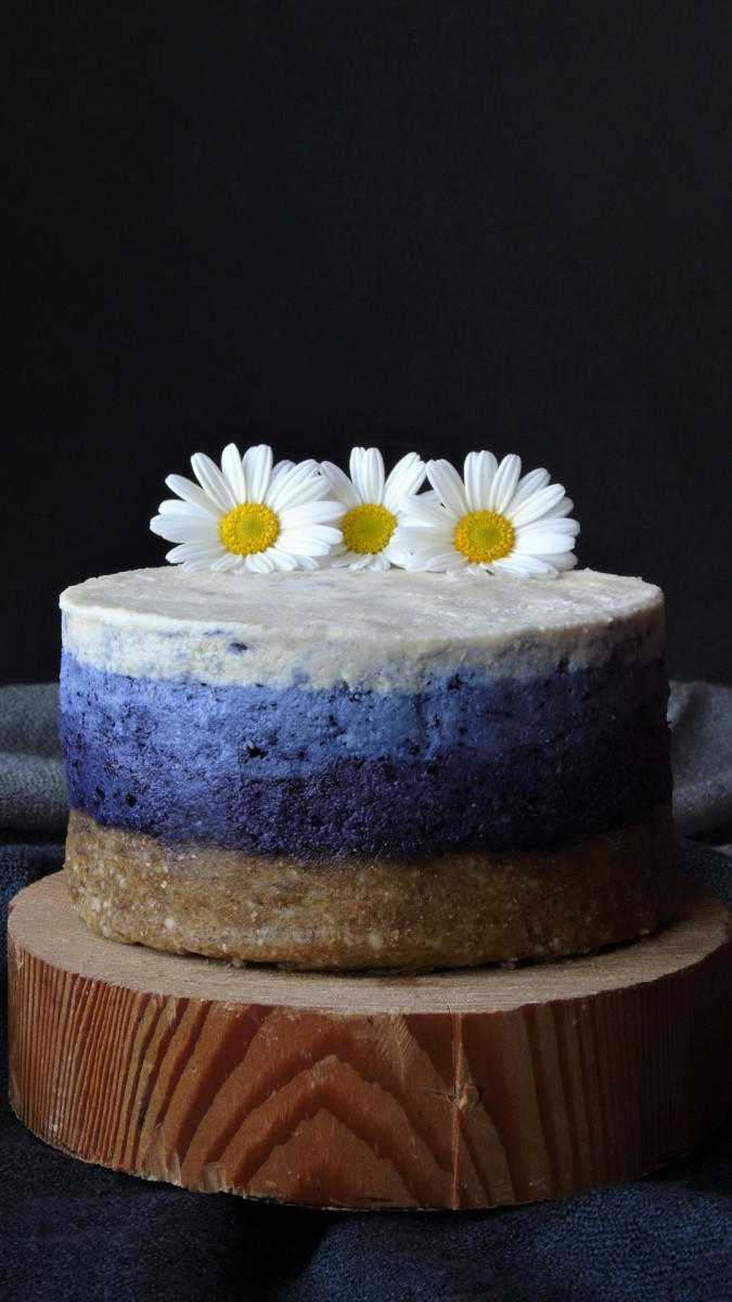 Mini cheesecake raw vegan cu afine-Raw Vegan Blueberry Ombre Mini Cheesecake